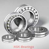 NSK 6006du  Self Aligning Ball Bearings